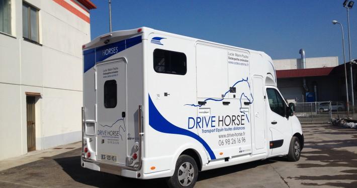 DRIVE HORSE (2)